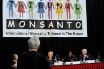Durante três dias, cinco juízes ouviram 30 depoimentos de pessoas prejudicadas pela Monsanto em tribunal popular realizado em Haia / Reprodução/ Facebook