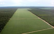 Latifúndios com mais de mil hectares (0,91%) concentram 45% de toda a área de produção agrícola. Foto: Rede Brasil Atual
